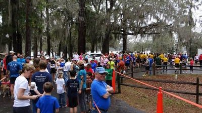 Maclay Gardens walk and runs always attract big crowds, such as this one for the 2013 Tallahassee Warrior Walk.