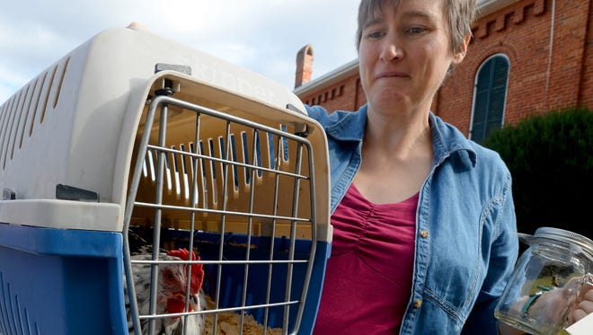 Ariana Coate holds the pet carrier with Lily the chicken in one hand and a jar with one of the bees from her hive in a file photo from 2014.