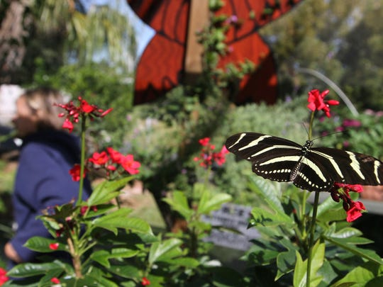 Free tours at the Tom Allen Memorial Butterfly House are every Monday, Friday and Saturday at 10:30 a.m. Rotary Park, 5505 Rose Garden Road, Cape Coral.