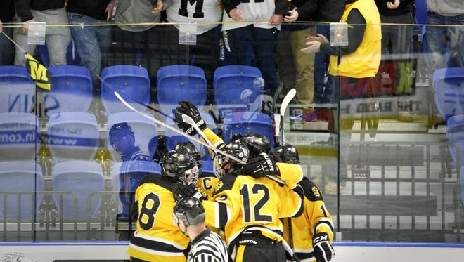 Fans celebrate McQuaid's goal during the Division I State Championship semi-final Ice Hockey match at the Utica Memorial Auditorium on Saturday March 14, 2015 in Utica, NY. McQuaid won the match 4-2.