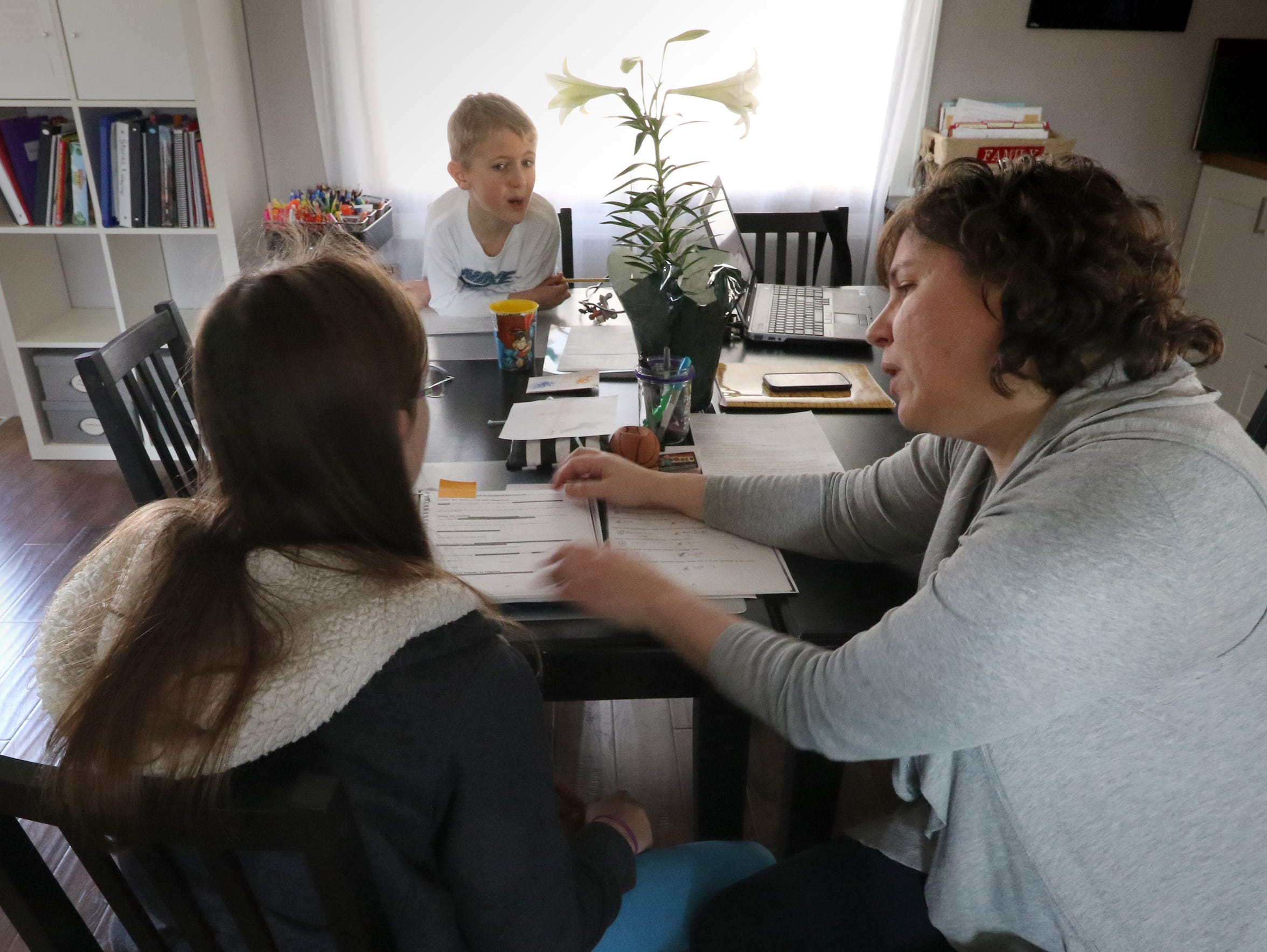 Colleen Boehm and her children Ellie, 12, and Nick, 9, gather at the kitchen table to work on age-appropriate mathematics studies at their Sussex home.
