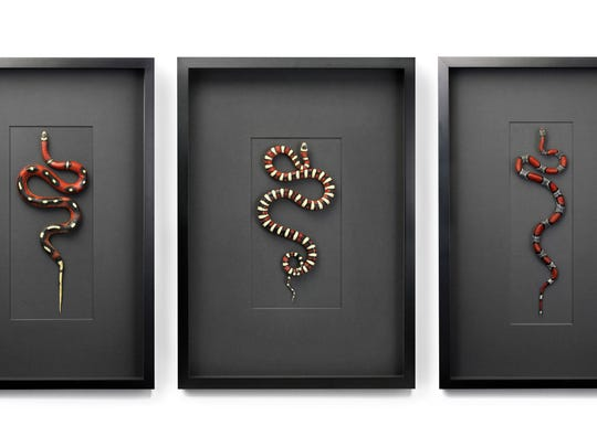 """3 Snakes"" by Christopher Marley incorporates elements of nature into contemporary art pieces. A single creature like a snake becomes an intriguing herpetological sculpture."