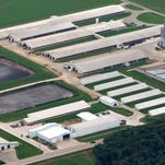 DNR to give farms more input in some regulatory functions