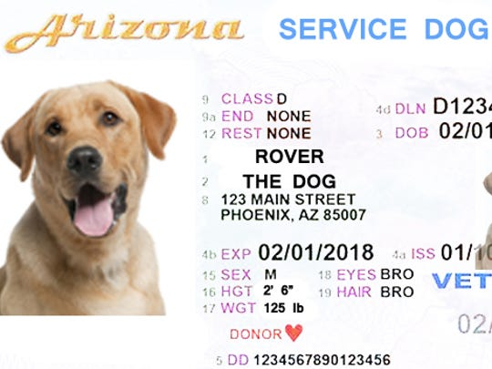If dogs need an annual permit to serve, maybe it should look at little something like this?
