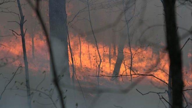 An unplanned wildfire.