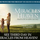 Miracles from Heaven movie in theaters, Annual Chrism Mass, foot washing