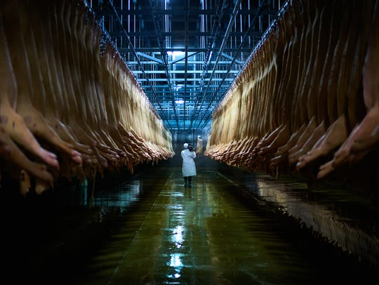 A worker walks down a slaughterhouse's aisle in the