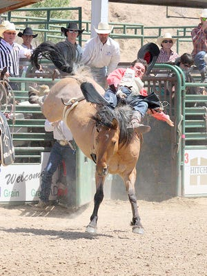 The Wild, Wild West Pro Rodeo will begin Wednesday at Southwest Horseman's Park Arena.