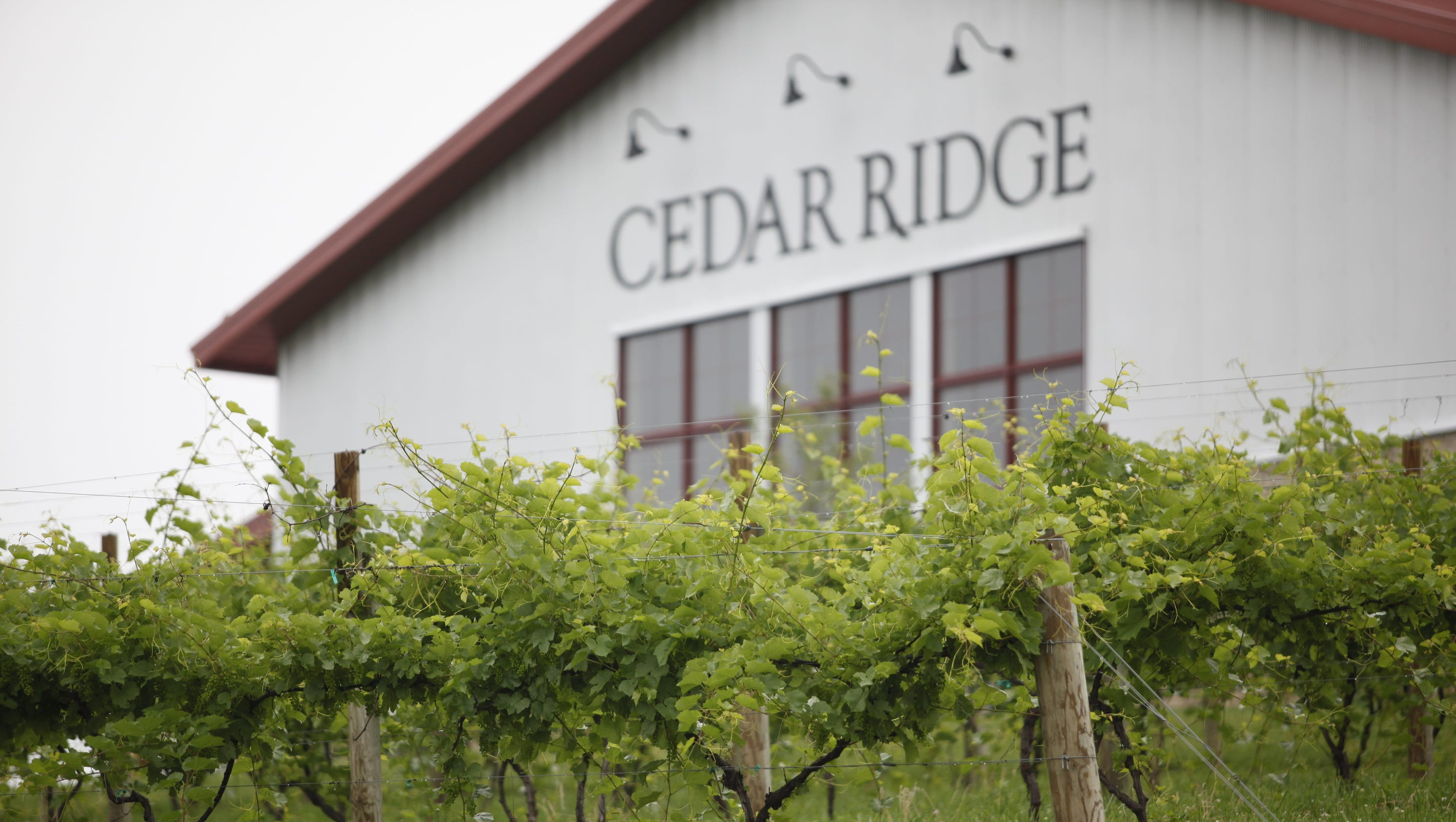 cedar ridge chat Cedar ridge soaps offers handcrafted soaps and body productsnaturally gentle, naturally inspired.
