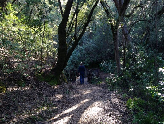 Upper Sacramento Ditch Trail 1
