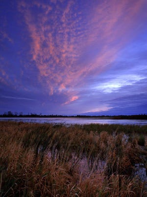 An undated photo along the marsh edge at the Ottawa National Wildlife Refuge in northwest Ohio, where expanded hunting and fishing will be allowed under a Trump administration order.