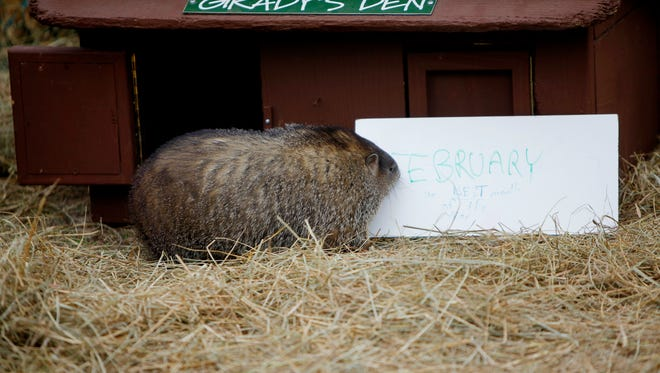 Will Grady the Groundhog see his shadow on Feb. 2? Come to Chimney Rock Park to find out.