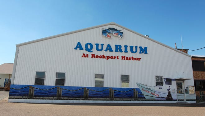 The Aquarium at Rockport Harbor will host documentaries at 1:30 p.m. and 2:30 p.m. Thursdays through Mondays from April 24 through May 29. Cost: Free. Information: 361-727-0016, www.rockportaquarium.com.