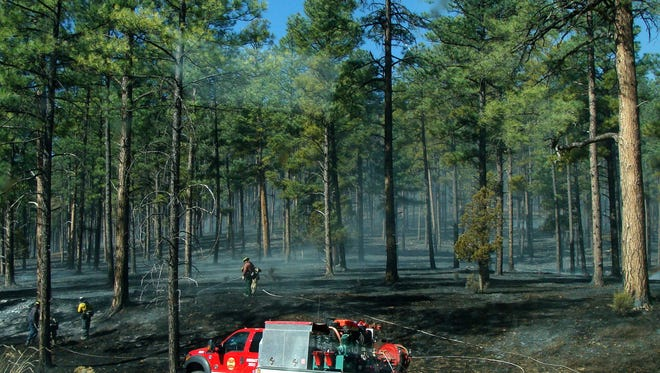 Fire fighters check for hot spots and tamp down embers after the moon mountain Fire last March in Ruidoso.
