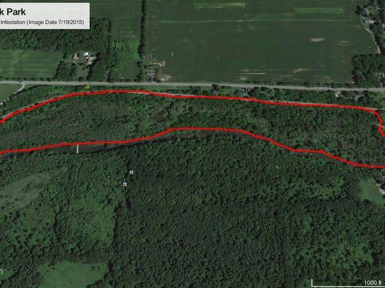 Google Earth - EAB Infested Area of Oatka Creek Park Riparian Corridor-Reduced