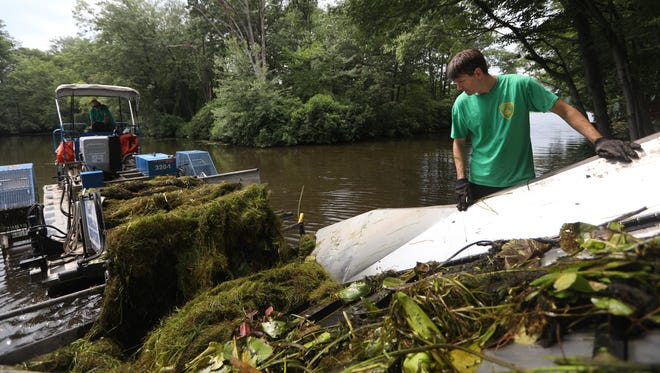 Brian Woelfel watches as weeds that were removed from Lake Hopatcong, are moved up a conveyer belt and onto a dump truck. Monday, July 16, 2018