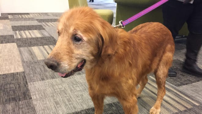 """Howard visited IndyStar in October, when he was named an official """"News Hound."""""""