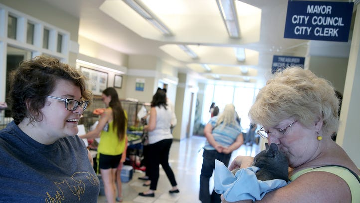 Feline frenzy at Port Orchard's 'Kitty Hall'