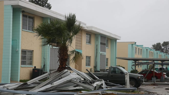Metal wrapped around a palm tree in Cocoa Beach due to the heavy winds of Hurricane Matthew.