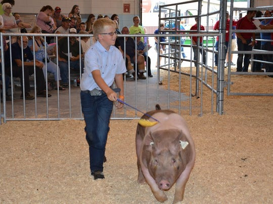 Far organizers understand that the fair is an important time for youth exhibitors to take pride in being recognized for their hard work and lessons learned through countless hours invested in the project.