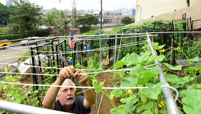Konstantinos Natsis, 70, of Weehawken has created a farm overlooking the Lincoln Tunnel, with sweeping views of the Manhattan skyline.