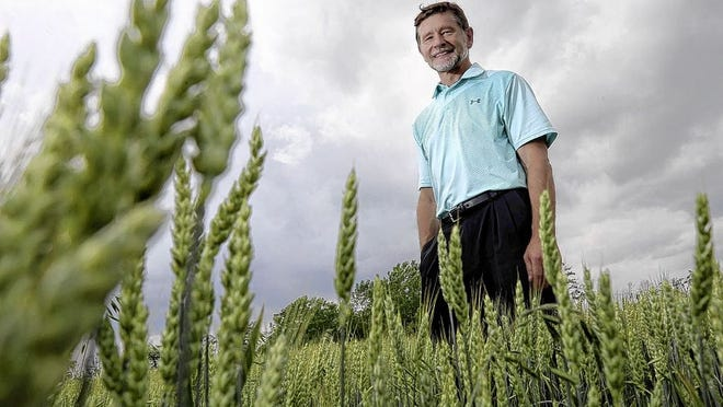 Alton Place developer Dwight McCabe stands in a field near Alton Darby Creek and Roberts roads in Hilliard. The field will be part of his planned mixed-use development on 354 acres.