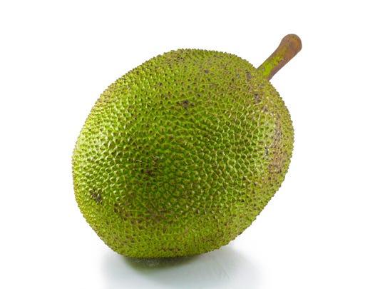 Jackfruit on white background
