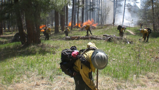 A U.S. Forest Service crew works on a prescribed burn.