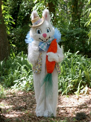 The Easter Bunny will hop on over to West Town Mall and Knoxville Center Mall to pose in photos with kids.