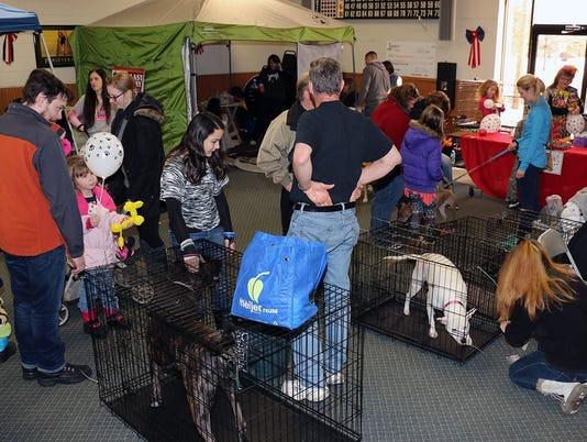 636252784690261700-WSD-pets-for-vets.jpg