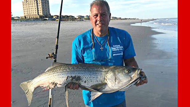 Ray Date of South Philadelphia caught this 44.5 inch striper off of the 16th Street Beach in Brigantine last Friday.