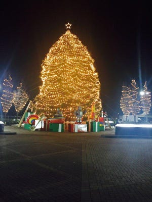 The 2015 tree at TD Bank in Cherry Hill was adorned with 60,000 lights. At 55 feet tall, this year's tree will be another standout.