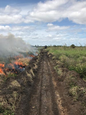 A brush fire burns just north of Florida's Turnpike March 25, 2017, in Indian River County.