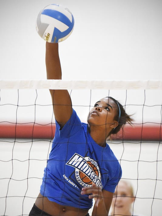 STC 0910 Annandale Volleyball 3