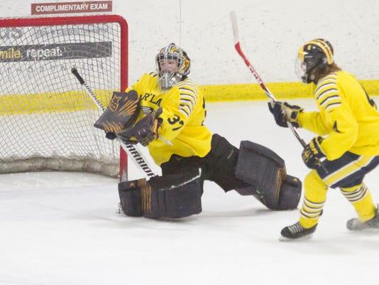 Hland-BR hockey_02.jpg