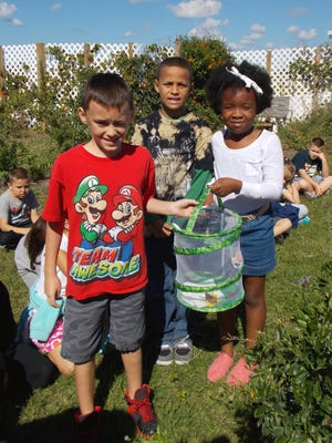 "Students at Patriot Elementary School in Cape Coral released butterflies last school year as part of its ""Winged 'Patriots' Soar"" grant project."