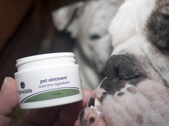 Daily Record AlphaZelle Pet Ointment