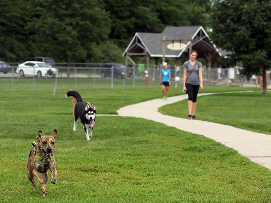 Tiger, front, and Koda take a lap around the Thornberry
