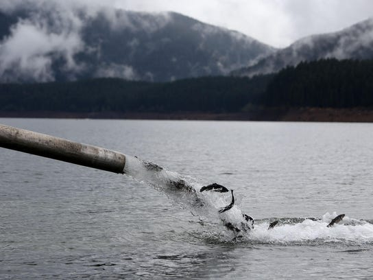 Oregon hunters anglers fear impact of license fee hike for Alabama non resident saltwater fishing license