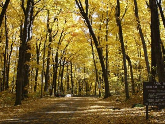 foliage hikes 07