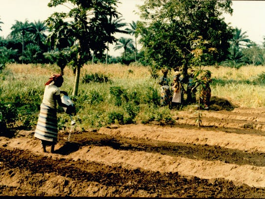 Women preparing a field for a tree nursery in the Republic