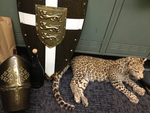 Authorities recovered items including armor, shields and a stuffed snow leopard worth $250,000 from a huge haul of high-end swag that thieves snagged during a party at an empty mansion,