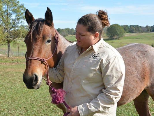 MSU horses