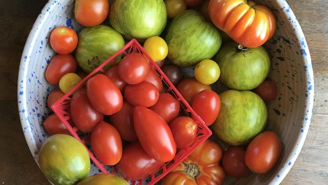 Pick out a variety of tomatoes at the farmers market or at the store. Each kind has a slightly different taste, texture and smell.