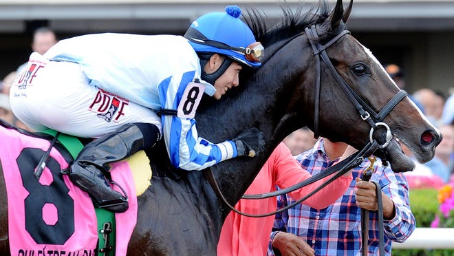 Holy Bull winner Upstart went into Saturday's Fountain of Youth the race favorite.