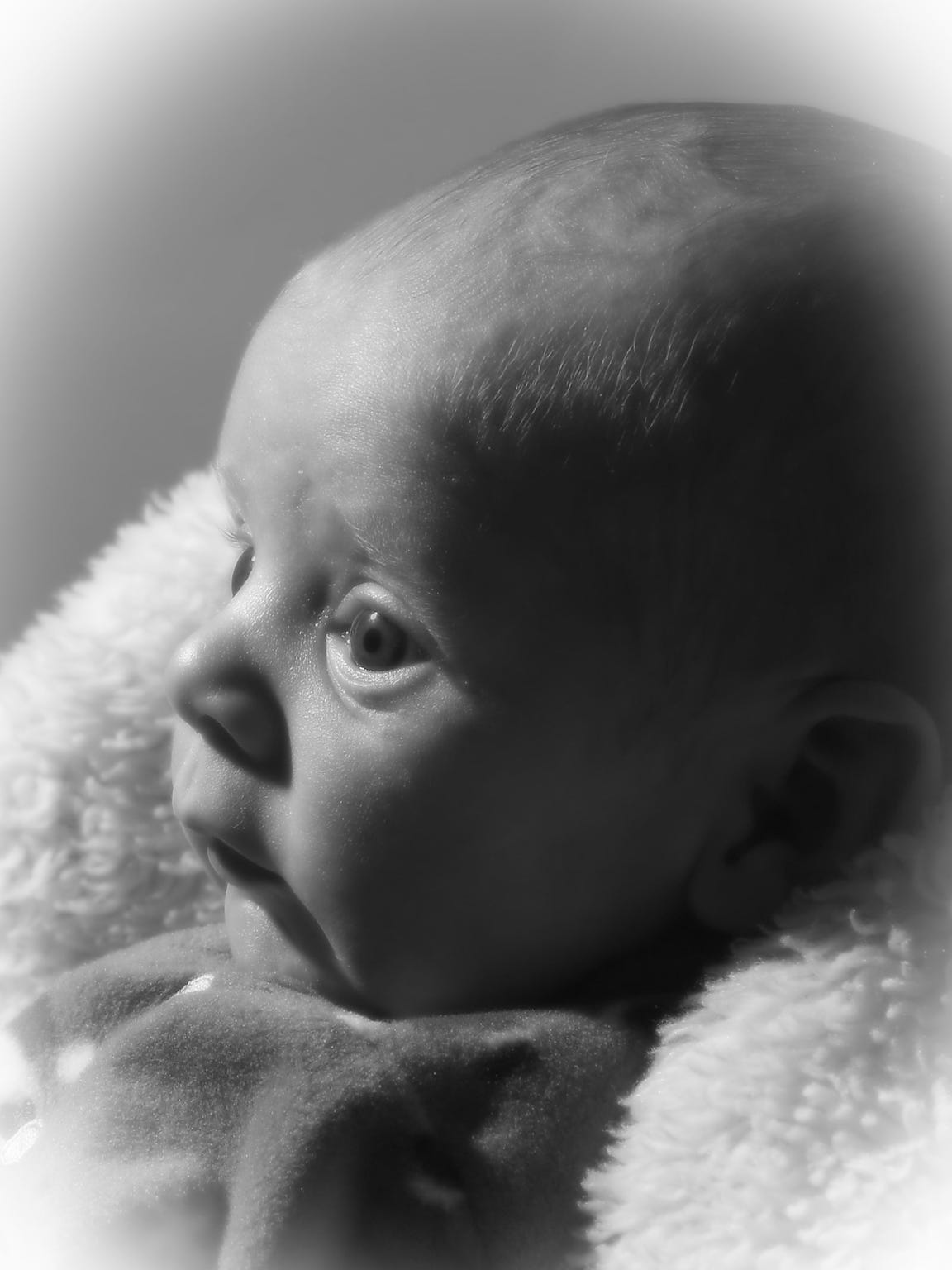 Baby Jerry is pictured prior to his traumatic brain injury in this studio portrait.