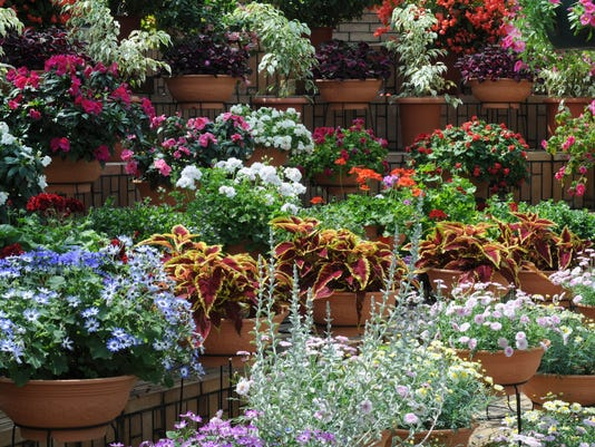 Garden with potted plants and flowers, Hyogo Prefecture, Honshu, Japan