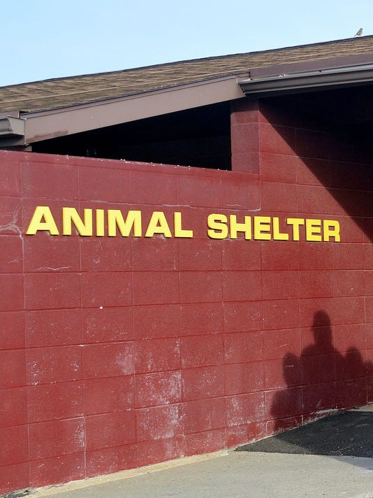 ELM 1011 ANIMAL SHELTER