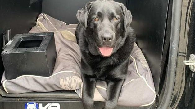 New Hampshire Fish and Game conservation officers located a missing child Saturday night with aid of its K-9 Cora.