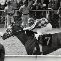 Calvin Borel aboard Rachel Alexandra celebrates before crossing the finish line to win the 2009 Haskell Invitational at Monmouth Park.
